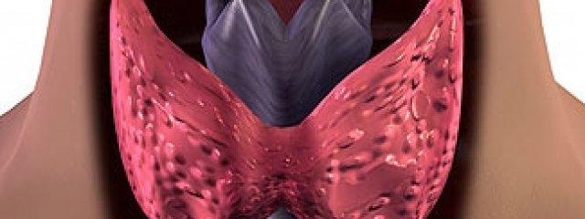 Hogyan zajlik a pajzsmirigy ultrahangos vizsgálata?